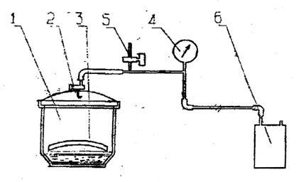 Установка для обработки образцов парами циклопентана