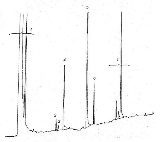Образец хроматограммы насадочной жидкости полистирола