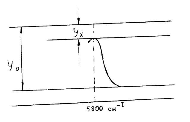 Определение оптической плотности