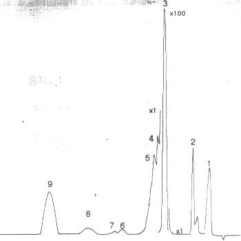 Хроматограмма товарного метил-трет-бутилового эфира на колонке с ТВИН-60
